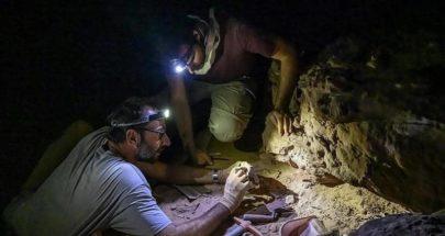 """بالصور.. دراسة توثق """"موقع أثري"""" عمره 8 آلاف عام بالسعودية image"""
