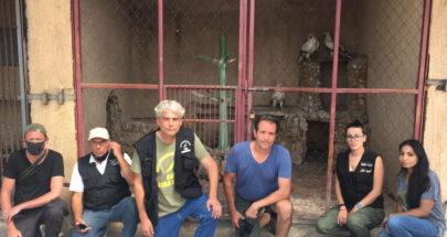 إنقاذ ثلاثة طيور رخمة مصرية من حديقة حيوانات في لبنان image