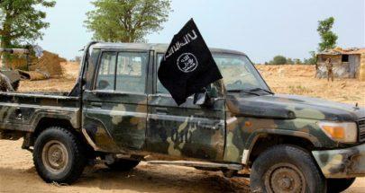 مقتل أكثر من 20 صياداً في غارة جوية في نيجيريا image