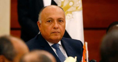 وزير الخارجية المصري: علاقاتنا مع قطر تسير بشكل جيد image
