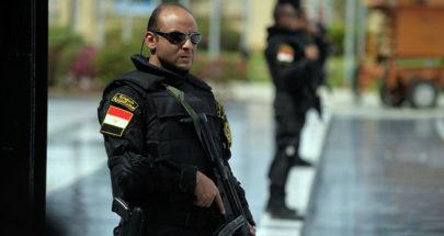 القبض على لص مصري شغل مواقع التواصل الاجتماعي image