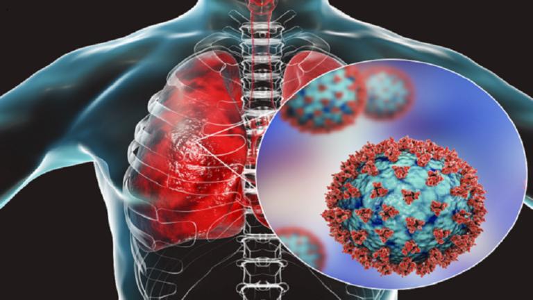 طبيب روسي يكشف عن الأعضاء البشرية الأكثر عرضة للإصابة بفيروس كورونا