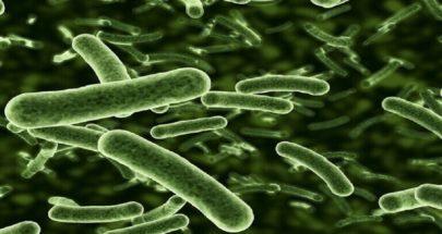 التقاط أوضح صورة على الإطلاق للبكتيريا الحية! image